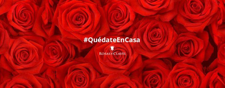 Quédate en Casa - Rosas y Clavel