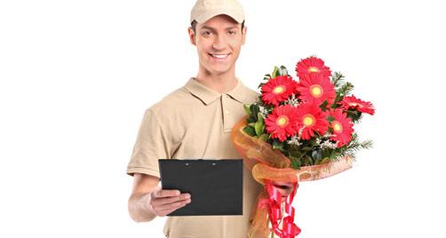 Delivery Rosas y Clavel