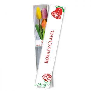 Caja con 3 tulipanes variados