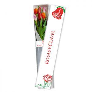 Caja con 6 tulipanes