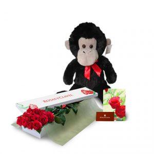 Peluche mono con caja con 12 rosas rojas