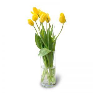 Florero con 10 tulipanes amarillos